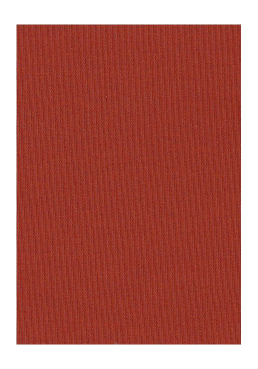 Jersey coton rouille