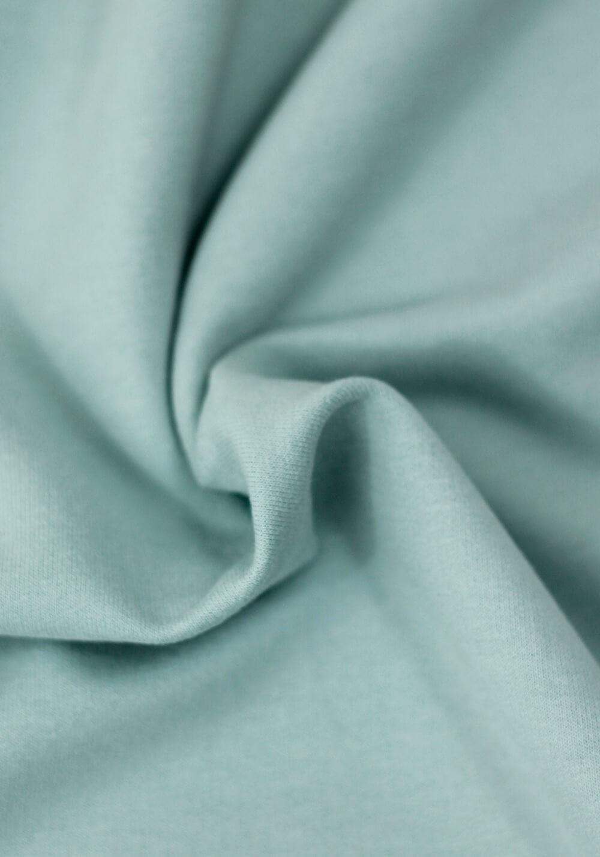 Tissu Molleton Bio - Skylight